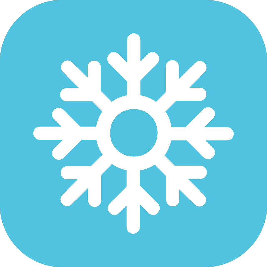 Icebusters Icon
