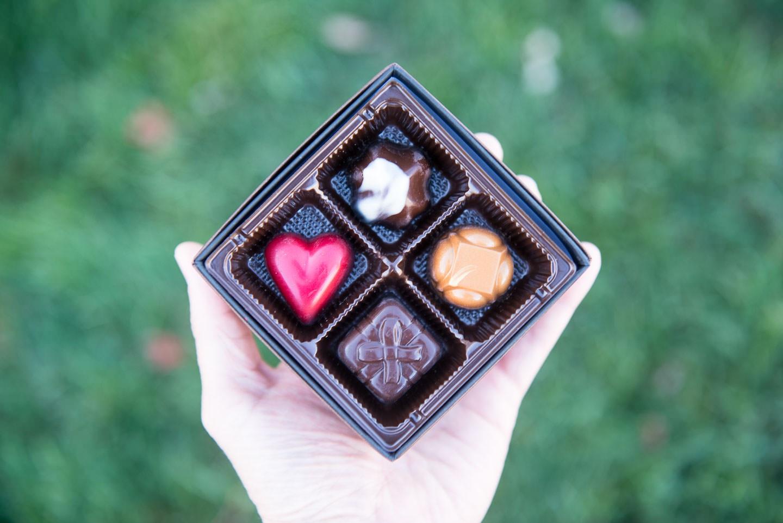 20181026 Cultivate Robin Chocolates D800A 01 02025